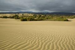 Stormachtige desert2 Stock Afbeeldingen