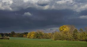 Stormachtige donkere wolken over de bomen en het gebied De dalingsscène Stock Afbeeldingen