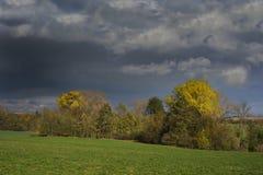 Stormachtige donkere wolken over de bomen en het gebied De dalingsscène Stock Fotografie