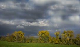 Stormachtige donkere wolken over de bomen en het gebied De dalingsscène Royalty-vrije Stock Foto's