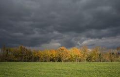 Stormachtige donkere wolken over de bomen en het gebied De dalingsscène Stock Afbeelding