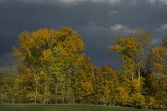 Stormachtige donkere wolken over de bomen en het gebied De dalingsscène Royalty-vrije Stock Foto