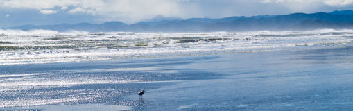 Stormachtige oceaanbranding die boos strand verpletteren Royalty-vrije Stock Foto