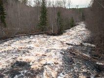 Stormachtige rivier met logboeken Royalty-vrije Stock Foto's
