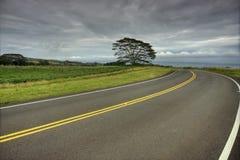 Stormachtige Weg Royalty-vrije Stock Afbeelding