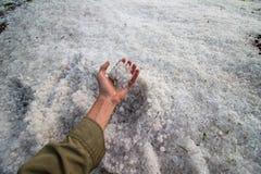 Stormeftersläckaren kammar hem upp ett litet hagel för handfull Royaltyfria Bilder