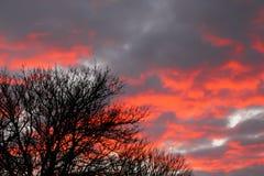 Stormen är brygga Fotografering för Bildbyråer