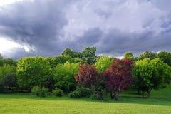 Stormen är kommande! Arkivfoto