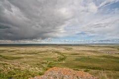 Stormen på huvudet som slås i buffel, hoppar Fotografering för Bildbyråer