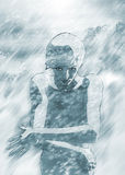 stormer śnieg Zdjęcia Stock