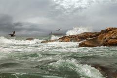 Stormhamn arkivbild