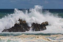 Stormig dag på udden Arkivbilder