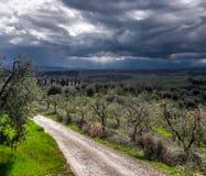 Stormig himmel över grönt fält Arkivbilder