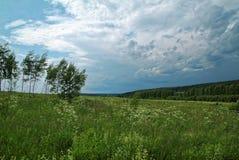Stormig himmel i sommaren i lantligt Fotografering för Bildbyråer