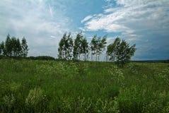Stormig himmel i sommaren i lantligt Royaltyfri Bild