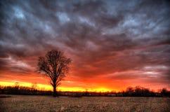 stormig solnedgång Arkivfoton