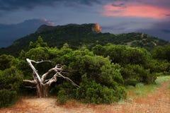 Stormig solnedgång i Krim Fotografering för Bildbyråer