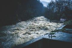 Stormig stark flod Royaltyfria Bilder