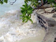 Stormiga vågor av Indiska oceanen i Maldiverna royaltyfria bilder