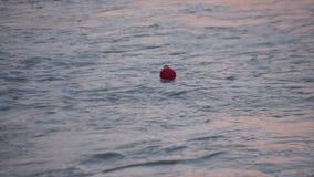 Stormiga vågor med en röd boj stock video