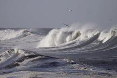 stormiga waves arkivfoto