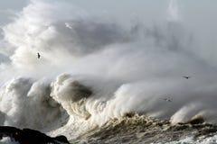 stormiga waves Arkivbilder