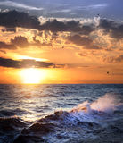 Stormigt hav med solnedgången och fåglar/härligt väder Fotografering för Bildbyråer