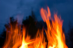 Storming flame Royalty Free Stock Image