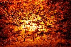 Stormloop van Rood Royalty-vrije Stock Afbeelding