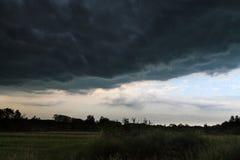 Stormmoln över ängen Arkivbild