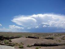 Stormmoln över den förstenade skogen Royaltyfri Bild