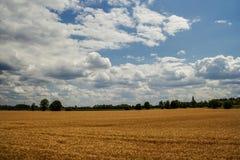 Stormmoln över fält Royaltyfria Foton