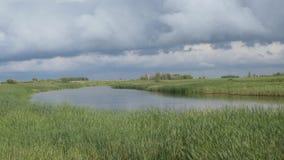 Stormmoln över sjön med vasser arkivfilmer