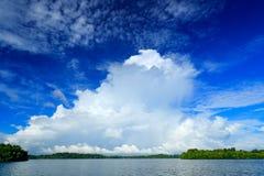 Stormmoln med mörker - blå himmel Bentota Ganga flod, Sri Lanka Sommarlandskap med vita stormiga moln Mangroveträd i Royaltyfri Bild