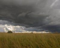 Stormmoln som rullar över fält Royaltyfri Bild