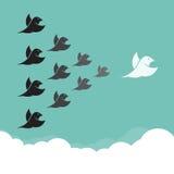 Stormo degli uccelli che volano nel cielo, Fotografia Stock