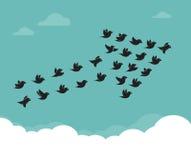 Stormo degli uccelli che volano nel cielo in una freccia Fotografia Stock Libera da Diritti