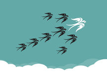 Stormo degli uccelli (sorso) che volano nel cielo illustrazione di stock