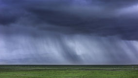 Storm's coming on meadow Royalty Free Stock Image