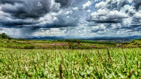 Storms Raining. #Storms #raining #rain #cloud #storm #grass #flower #sky #mountain #view #views #nature #ttzanzone #z1f #thailand #dark Stock Image