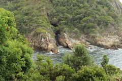 Storms river Royalty Free Stock Photos