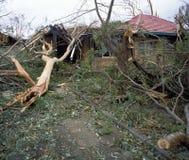 Stormskada royaltyfria bilder
