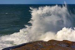 Stormvågen som bryter på, vaggar royaltyfri fotografi