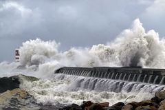 Free Stormy Atlantic Waves Royalty Free Stock Image - 36384976