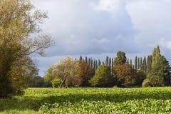 Stormy autumn landscape Stock Images