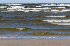 Stormy Baltic sea. Stock Photography