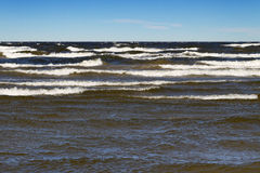 Stormy Baltic sea. Stormy Baltic sea with big waves Royalty Free Stock Images