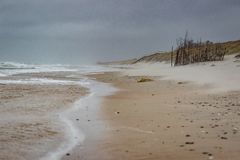 Stormy Baltic sea at Curionian Spit with empty beach.  royalty free stock image