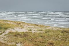 Stormy Baltic sea at Curionian Spit with empty beach and sand dunes.  royalty free stock image