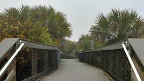 Stormy beach boardwalk, 4K. Storm on beach blowing fog across wooden walkway, 4K stock footage